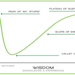 ¿Value, growth o growlue? Quizás lo mejor es quedarse en un punto intermedio.